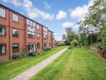 Thumbnail for sale in Chestnut Court, Southampton