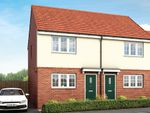 "Thumbnail to rent in ""Halstead"" at Long Lands Lane, Brodsworth, Doncaster"