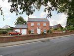 Thumbnail to rent in Kirby Hill, Boroughbridge, York