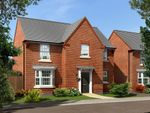 "Thumbnail to rent in ""Mitchell"" at Ellerbeck Avenue, Nunthorpe, Middlesbrough"