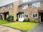 Thumbnail for sale in St. Catherines Close, London