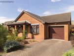 Thumbnail for sale in Sands Lane, Scotter, Gainsborough