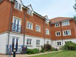 Thumbnail to rent in Martinique Way, Eastbourne, East Sussex