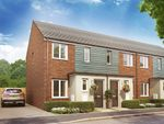 "Thumbnail to rent in ""The Alnwick "" at Christie Drive, Hinchingbrooke Park Road, Huntingdon"