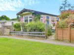 Thumbnail for sale in Meadowside Park, Lingfield