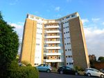 Thumbnail to rent in Furze Hill, Hove