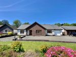 Thumbnail to rent in Waungiach, Llechryd, Cardigan