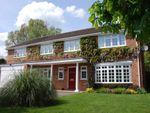 Thumbnail to rent in Pine Walk, Cobham