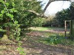 Thumbnail for sale in Land @ Church Lane, Great Holland, Frinton-On-Sea, Essex