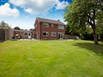 Thumbnail to rent in Bramber Close, Horsham, West Sussex