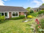 Thumbnail for sale in Field End, Kings Worthy, Winchester