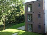 Thumbnail to rent in Hereford Road, Monmouth