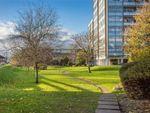 Thumbnail to rent in Wellington Close, Walton-On-Thames, Surrey