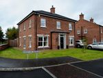 Thumbnail to rent in Kings Oak Meadow, Lisburn