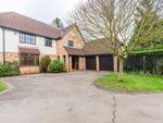 Thumbnail for sale in Barnsfield, Fulbourn, Cambridge, Cambridgeshire