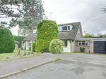Thumbnail for sale in Pynchon Paddocks, Little Hallingbury, Bishop's Stortford, Herts