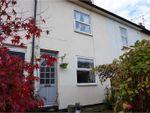 Thumbnail for sale in Prospect Terrace, Cheltenham