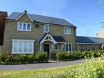 Thumbnail for sale in Pyrus Walk, Bridgwater