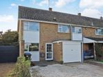 Thumbnail to rent in Notcutts, East Bergholt, Colchester