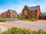 "Thumbnail to rent in ""Lincoln"" at Plox Brow, Tarleton, Preston"