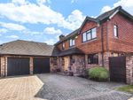 Thumbnail for sale in Bay Tree Close, Bromley