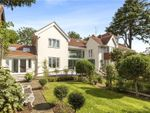 Thumbnail to rent in The Downs, Wimbledon