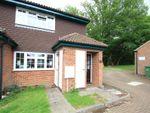 Thumbnail to rent in Clews Lane, Bisley, Woking