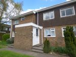 Thumbnail to rent in Lincoln Court, Shirley, Southampton