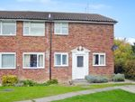 Thumbnail to rent in Chester Place, Basingstoke