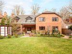 Thumbnail for sale in Frances Avenue, Maidenhead, Berkshire