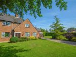 Thumbnail for sale in Downfield Road, Waltham St. Lawrence, Reading