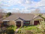 Thumbnail for sale in Foxdown Manor, Wadebridge