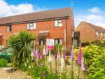 Thumbnail for sale in South Green, Dereham