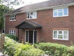 Thumbnail to rent in Longacre Rise, Chineham, Basingstoke