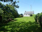 Thumbnail to rent in Llanteg, Efailwen, Clynderwen, Carmarthenshire