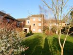 Thumbnail to rent in Ashtree Road, Frome