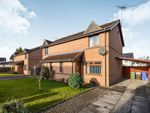 Thumbnail for sale in Flint Crescent, Cowie, Stirling