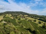 Thumbnail for sale in Blackdown, Haslemere, Surrey