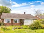 Thumbnail for sale in Brooke Close, Kings Worthy, Winchester