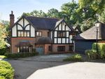 Thumbnail for sale in Pagitts Grove, Hadley Wood, Herts