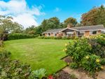 Thumbnail for sale in Priory Road, Palgrave, Diss