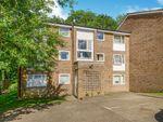 Thumbnail to rent in Blair Close, Hemel Hempstead