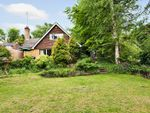 Thumbnail for sale in Yew Tree Drive, Caterham, Surrey