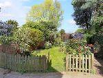 Thumbnail for sale in Grove Park Gardens, London