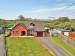 Thumbnail to rent in Goylands Close, Llandrindod Wells