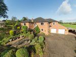 Thumbnail to rent in Redbank House, Irthington, Carlisle, Cumbria