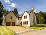Thumbnail for sale in Forgan Grove, Forgandenny, Perth And Kinross