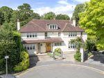 Thumbnail to rent in Lancaster Gardens, Wimbledon Village