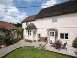 Thumbnail to rent in Park Farm Cottages, Frome St. Quintin, Dorchester, Dorset