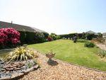 Thumbnail for sale in Lytchett Matravers, Poole, Dorset